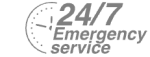 24/7 Emergency Service Pest Control in Finsbury Park, Manor House, N4. Call Now! 020 8166 9746